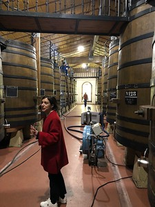 Bodegas Muga in Rioja
