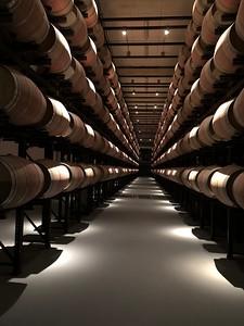 Aalto Winery