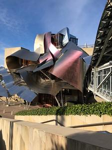 Gehry design