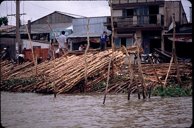 town in the Mekong delta