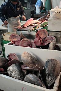 Tuna processing
