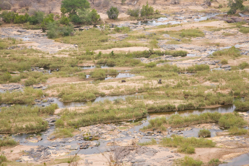 High view of Oliphants River