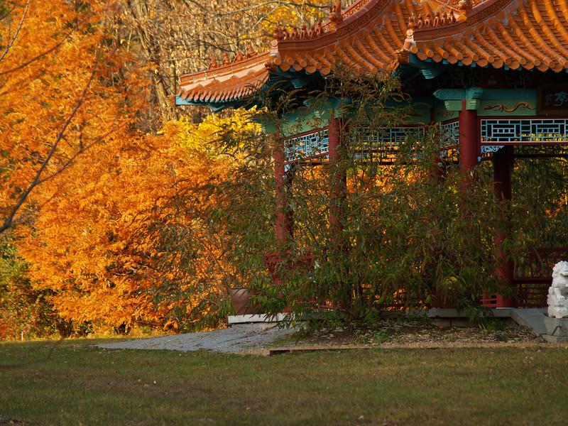 Lasdon Park - Oriental Tea House