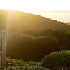 Dinner at Mudbrick, Waiheke Isalnd, Auckland, NZ