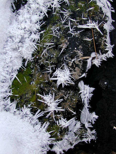Ice Crystals, Westcliff, CO