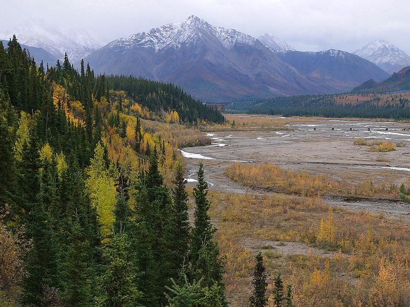 View of the Alaska Range in Denali National Park