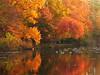 Autumn on Plainsboro Pond, NJ