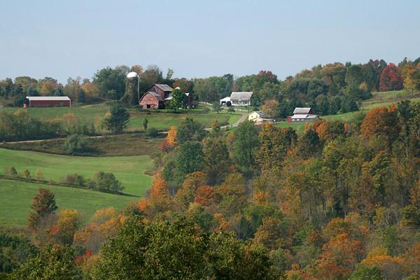 Autumn on the Farm, Cortland NY