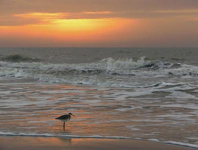 Sandpiper Sunrise, Hilton Head Island SC