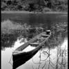 Sunken Boat, Cayo, Belize.