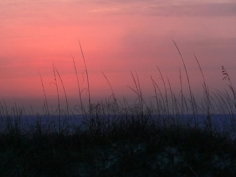 Dunes at Sunset, Hilton Head Island SC