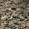 Thousands upon thousands of shoes taken from the condemed holocaust prisoners.