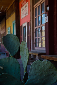 Cactus and parade of shops In the former ghost town of Cerrillos, New Mexico, USA