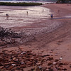 Beach at dusk<br /> Town Beach market, Broome, Western Australia