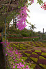 Botanical gardens,Madeira