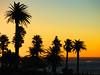 Camps Bay sunset, SA