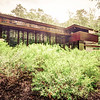 The Usonian House at Crystal Bridges