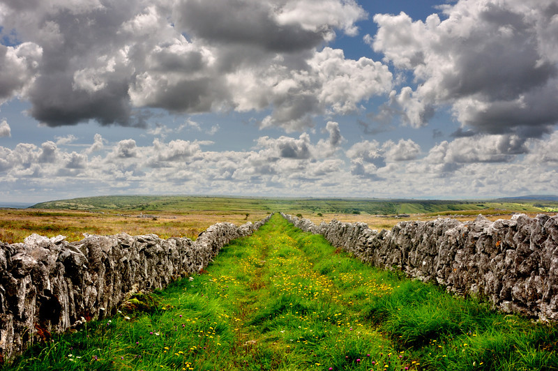 Burren Lane