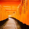 Torii Gates in the Rain at Fushimi Inari-taisha, Kyoto Japan