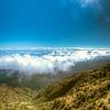A Walk Above the Clouds in Maui
