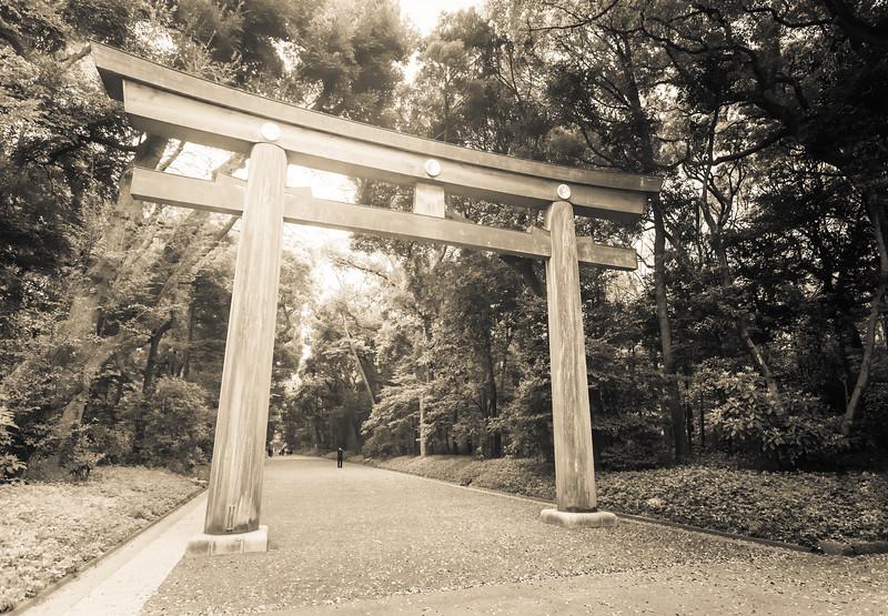 Entering the Gate at Meiji Jingū
