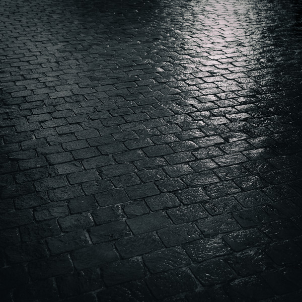 Wet Cobblestones in Geneva