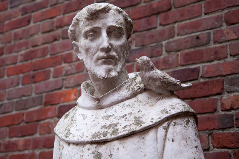 Day 66. September 12, 2010. St. Francis of Assisi in the St. Francis of Assisi garden along the Freedom Trail in Boston. If you aren't current with your knowledge of patron saints, St. Francis is the patron saint of animals and the environment; hence, the bird. But the first thing I though upon seeing the bird was the bluebird from Zip-a-Dee-Doo-Dah.<br /> <br /> EF-S 17-55mm f/2.8IS @ 40mm f/2.8. 1/200. ISO 200.