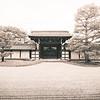 Japanese Gate at Tenryu-ji
