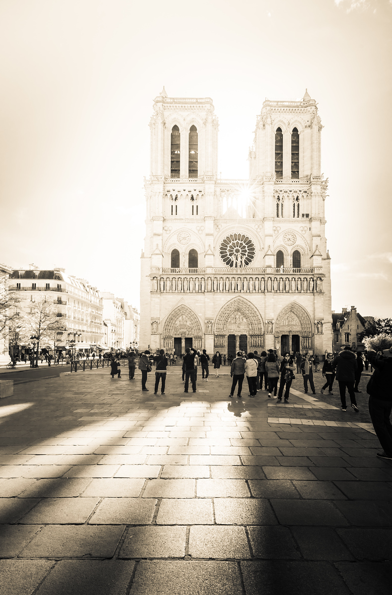 Notre-Dame de Paris One Morning