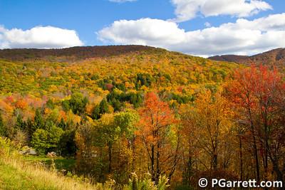 Fall in the Bershires, NY