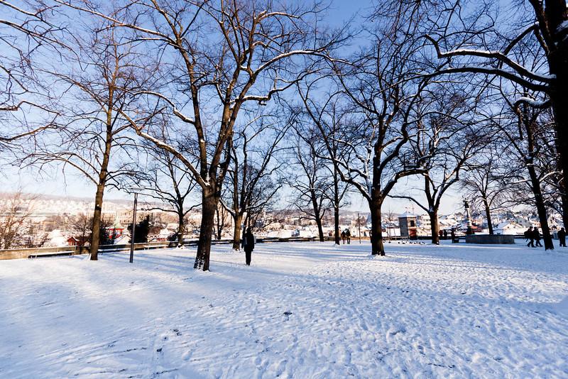 Park near ETH Zurich