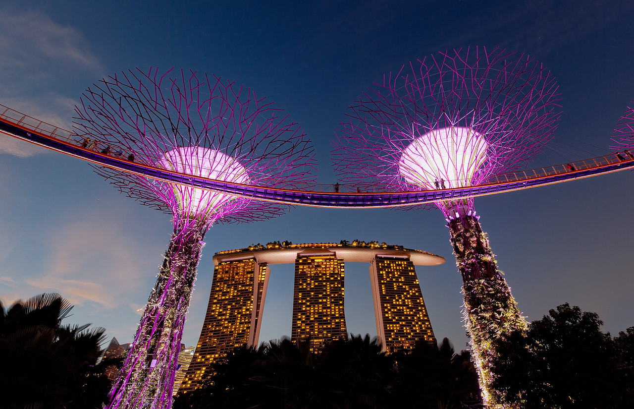 Supertrees and The Marina Bay Sands in Singapore
