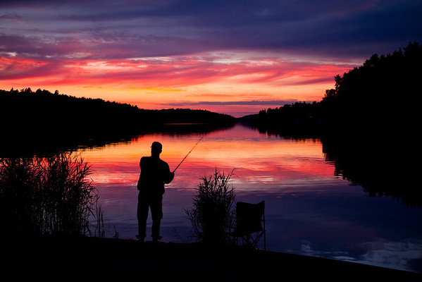 In the evening sunlight of Sweden, an expert fishman reels in his line, feeling for that faint tug on the line.