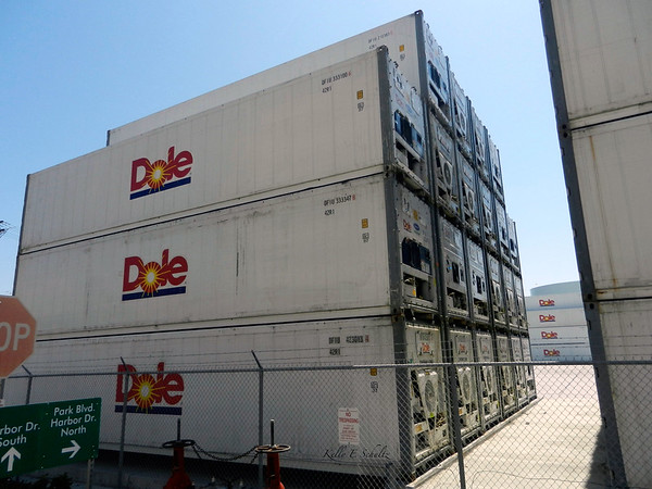 On the trolley, passing the Dole import drop off place thing.  There were rows and rows of containers like these!