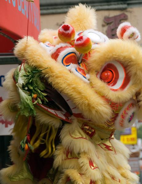 Dragon in China Town, San Francisco