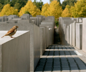 Berlin, Germany, Memorial to the Murdered Jewish People of Europe