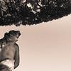Italian Statue Under a Tree