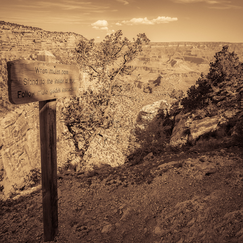 When Mules Pass Sign, Grand Canyon