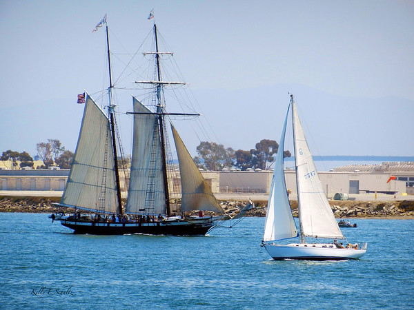 Tall Ship and sailboat on the bay.
