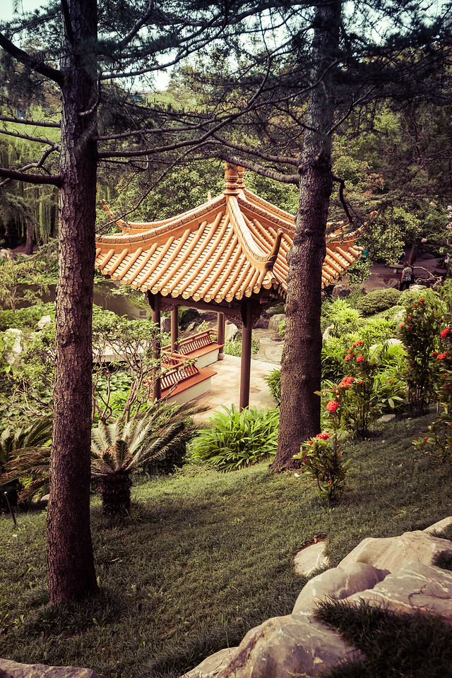 Chinese Garden in Sydney Austraila
