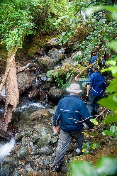 We hiked up to a beautiful stream and waterfall while lunch was being prepared.