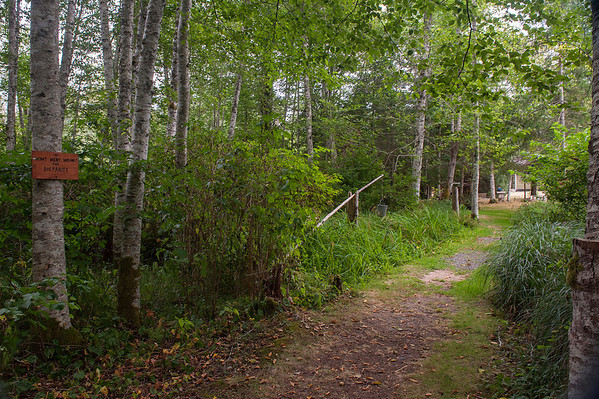 This path led to George's home.  Althought he has died, his wife lives here and is likely responsible for the erie classical music projected into the forest.
