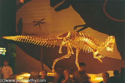 Alberta 1996 -  (23 of 33)