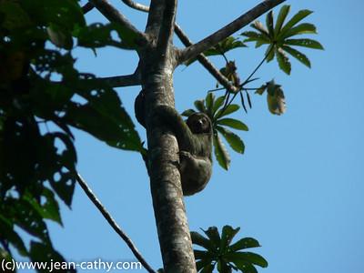 Costa Rica 2007_ (11 of 85)