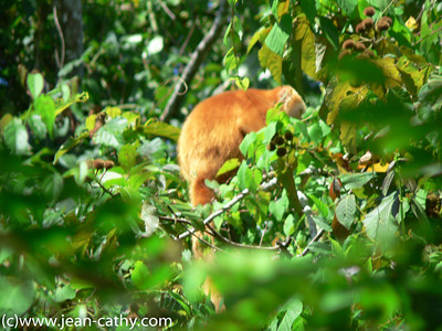 Costa Rica 2007_ (60 of 85)