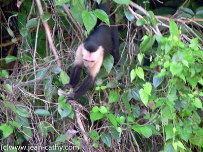 Costa Rica 2007_ (71 of 85)