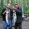 A coho and a spring salmon.  The spring is about twice the weight