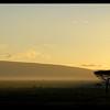 Dawn in Mara North Conservancy, Kenya, 2009