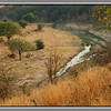 """The River<br /> Tarangire is full of views like this on the """"River Circuit"""" .You can just spot a waterbuck here - follow where your eye goes in the picture (or maybe it's not a waterbuck - get your magnifying glass out). Usually there would be elephants, zebras and something else. The trees along the banks are heavy with birds of prey too. Not comfortable range for my lenses but with a really big lens you'd get some fabulous shots of raptors here."""