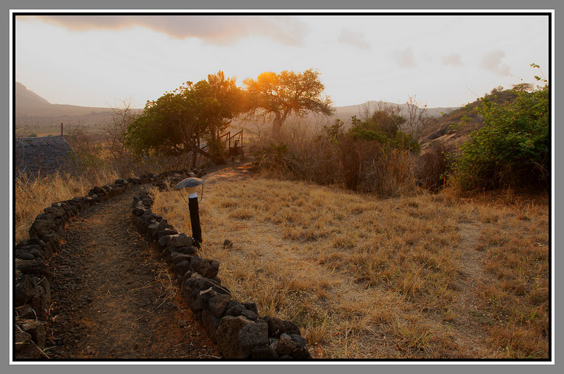 """We stayed at Ngulia Safari Camp aka Ngulia Bandas aka Rhino Valley Lodge. The Ngulia area is in the north-east of the park and a little way from the most visited area in the north-west. The bandas (which effectively means """"cottage/hut/bothy style accommodation"""" in local terms, and can range from a tin shack without windows to the ultimate in eco-luxury) are beautifully located on the side of a hill/escarpment and are very reasonably priced by Kenyan standards. The grounds are pleasant and that's what we're looking at here, with a ramp down to the banda we stayed in (on the left). A little run down and managed fairly haphazardly, it's still a nice place and rarely crowded since the constant name changes mean they have very few bookings! In any case capacity is only around 25 people."""